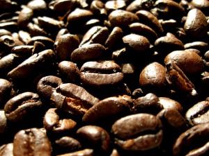 Coffeegrains