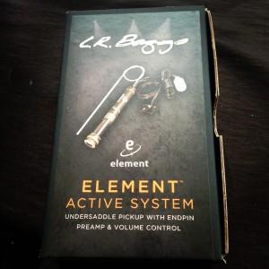 L.R. Baggs Element